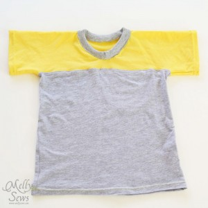 Create and Sew T-Shirt