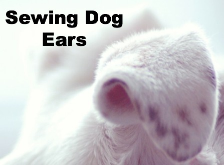 Add Strength to pockets with Dog Ears | The Sewing Loft