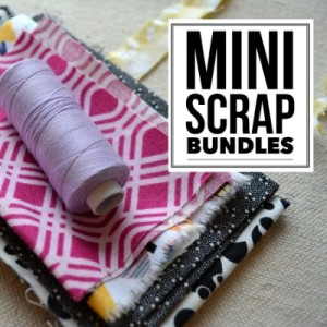 Make Mini Scrap Bundles