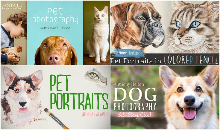 Enjoy your furry friends in a whole new way with a few Craftsy classes.