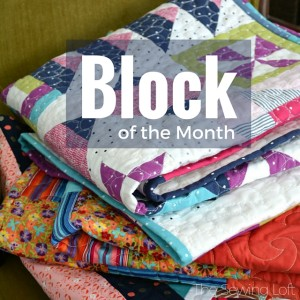 Block of the Month | Sewing Term