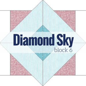 Block 6 Diamond Sky | Starry Night Quilt