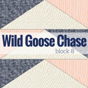 Block 8 Wild Goose Chase | Starry Night BOM