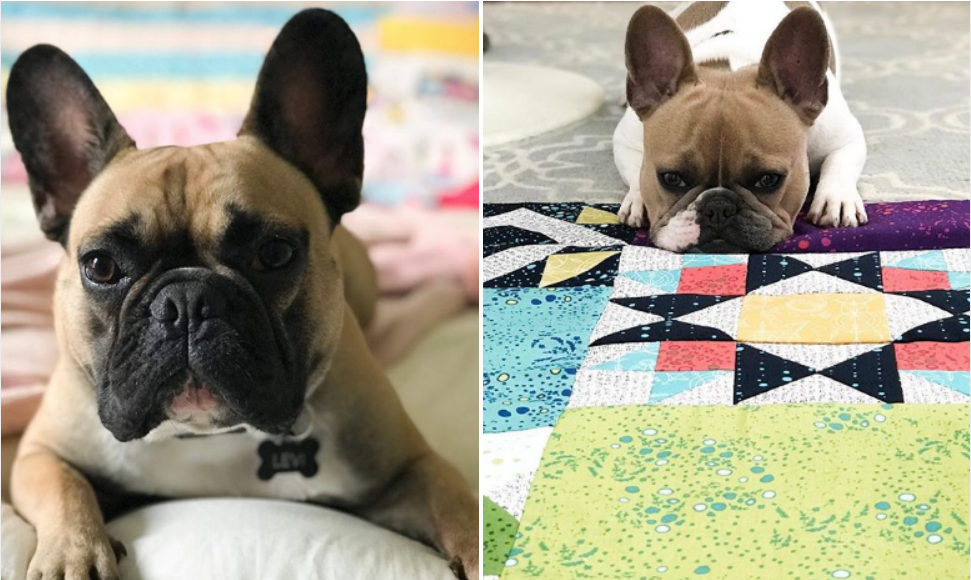 Quilting with friends | The Sewing Loft