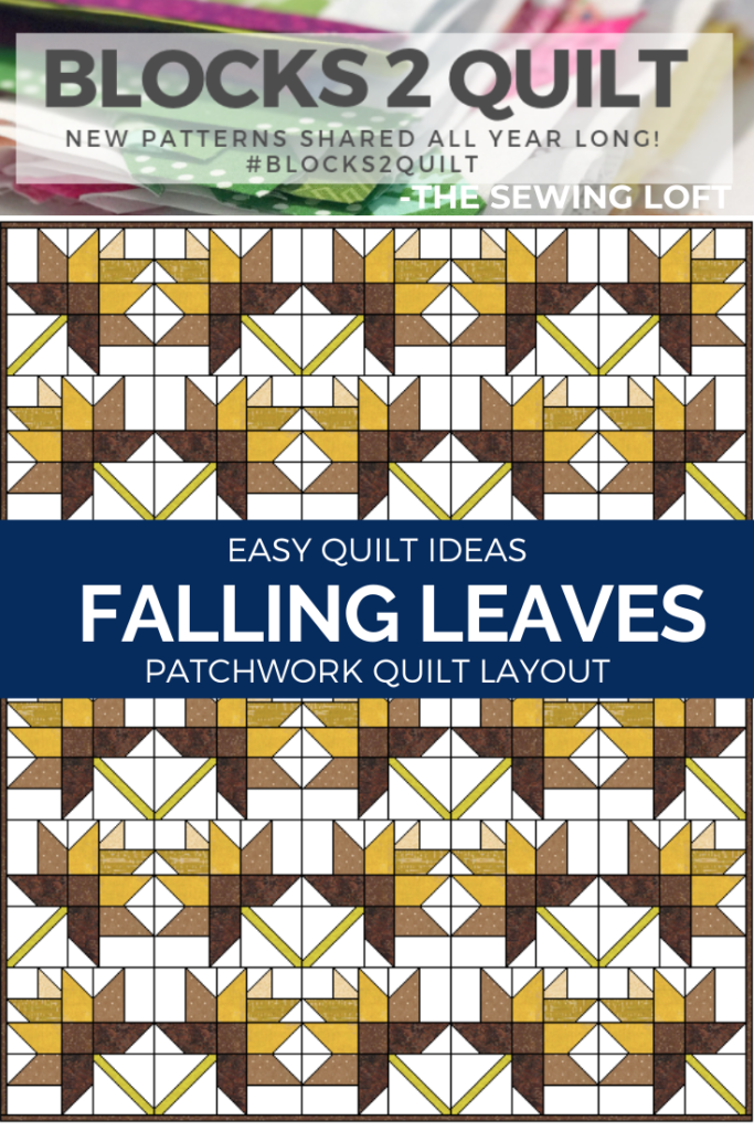 Easy Quilt Ideas with Blocks 2 Quilt